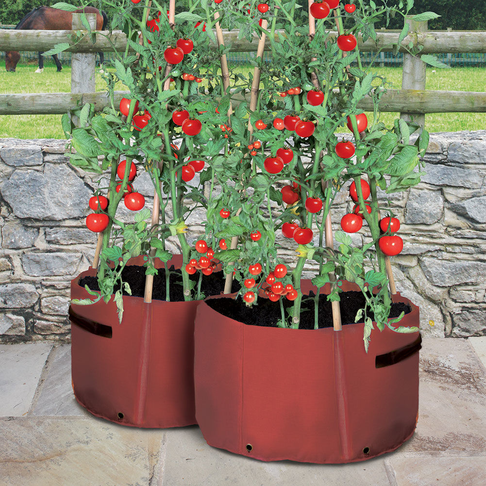 Tomato Patio Planter From Haxnicks And Comes In 2