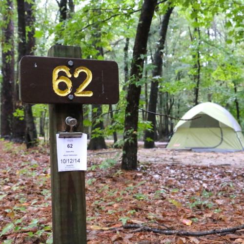 Caddo Lake Campground