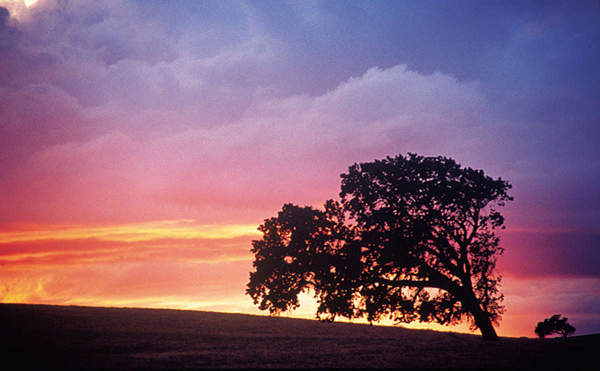 Monterey County Sunset