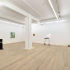 Minty, 2013, installation view, Foxy Production, New York