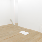Gordon Hall, 2014, installation view, Foxy Production, New York