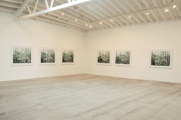 Luisa Lambri at Marc Foxx Gallery, Los Angeles