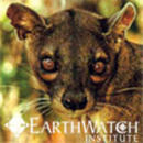 Study Abroad Reviews for Earthwatch: Madagascar - Carnivores of Madagascar