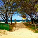 The Education Abroad Network: Gold Coast - Bond University Photo