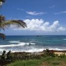 Study Abroad Programs Across Puerto Rico Photo