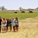 Study Abroad Reviews for Round River Conservation Studies - Botswana Program