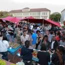 Study Abroad Reviews for USAC: Stellenbosch - Study Abroad at Stellenbosch University