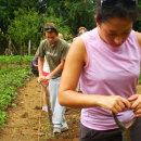 Study Abroad Reviews for CIEE: Santiago - Summer Community Public Health, Dominican Republic