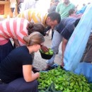Study Abroad Reviews for SIT Study Abroad: Morocco - Arabic Language and Community Service (Summer)