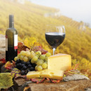Study Abroad Reviews for WSU Faculty-Led Summer Program - Italy: Food and Wine of Italy