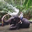 South India Term Abroad - SITA Photo
