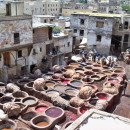 Study Abroad Reviews for University of Minnesota: Fez - Arabic Language & Culture in Morocco