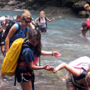 Study Abroad Reviews for Rollins College: Traveling - First Year Field Study: Costa Rica