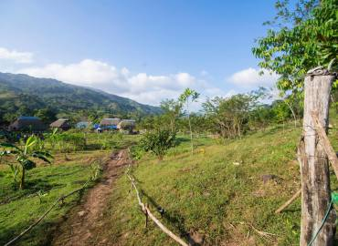 Study Abroad Reviews for Kalu Yala Entrepreneurial Internships: San Miguel, Kalu Yala and Panama City