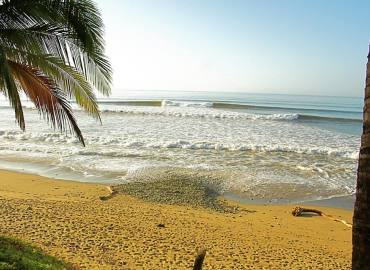 Study Abroad Reviews for The Sea State: Playa Reina - Creative Nonfiction Writing - Surf Journalism