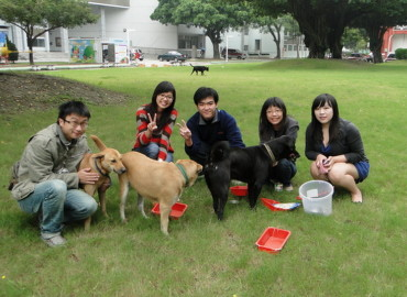 Study Abroad Reviews for National Cheng Kung University: Tainan - Direct Enrollment & Exchange