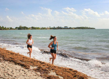 Study Abroad Reviews for MEI High School Study Abroad: Backpackers - Central America (Biology)