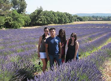 Study Abroad Reviews for CEA: Aix-en-Provence, France