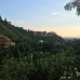 Photo of IES Abroad: Granada - Study Abroad with IES Abroad