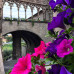 Photo of USAC Italy: Viterbo - Intensive Italian Language, History, and the Arts