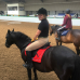 Photo of Adelante: Edinburgh - Equine Summer Program in Scotland