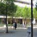 Photo of University of Minnesota: Montpellier - Business in France