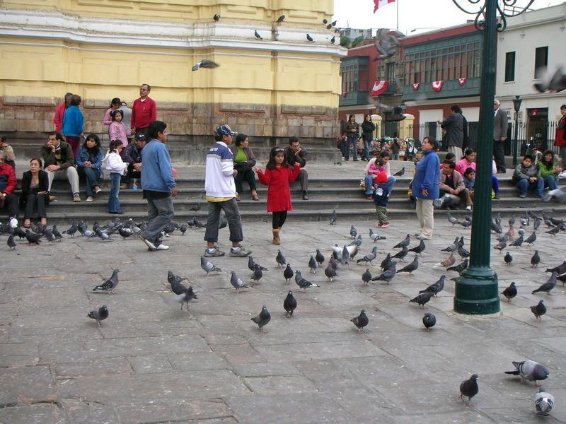 Study Abroad in Peru | Go Overseas