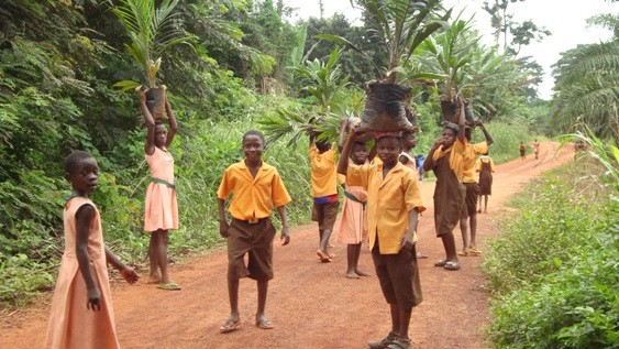 Central College Abroad: Accra - History, Arts and Culture In Ghana