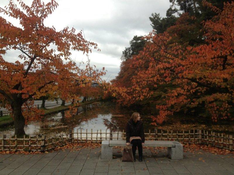 Hirosaki University Hirosaki University Hirosaki