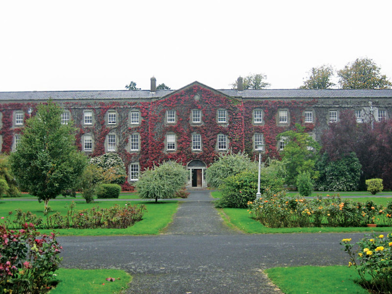 department of mathematics - Maynooth University