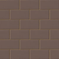 "Costa Allegra 3"" x 6"" x 5/16"" Floor and Wall Tile in Timber"