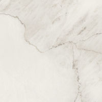 "Magnifica 30"" x 30"" x 1/4"" Floor and Wall Tile in Lincoln Super White"