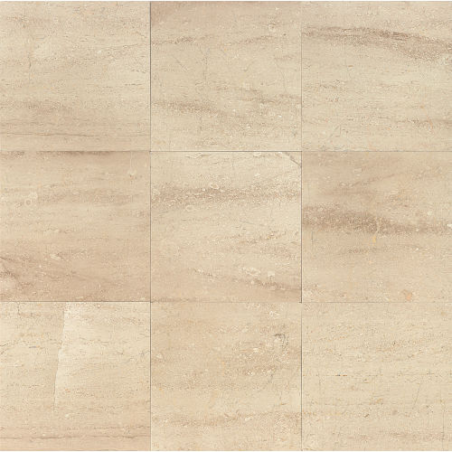 "Daino Reale 12"" x 12"" Floor & Wall Tile"