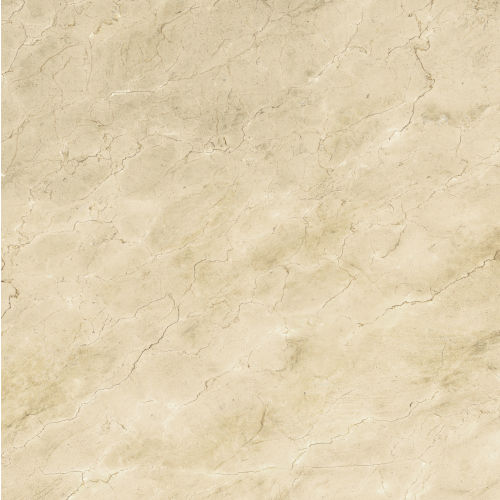 "Plane 60"" x 60"" Floor & Wall Tile in Marfil Vena"