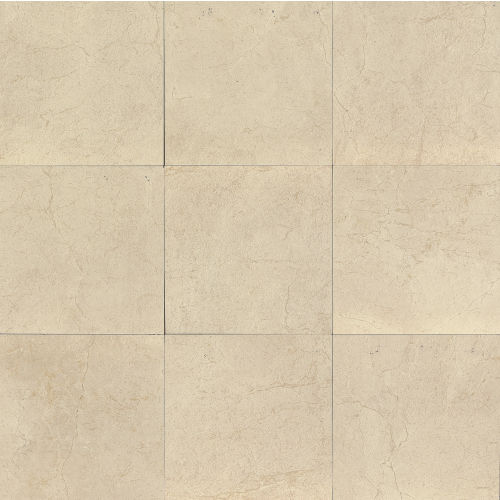 "Marfil 20"" x 20"" x 5/16"" Floor and Wall Tile in Bianco"