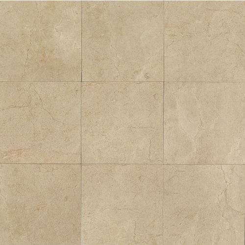 "Marfil 24"" x 24"" Floor & Wall Tile in Crema"