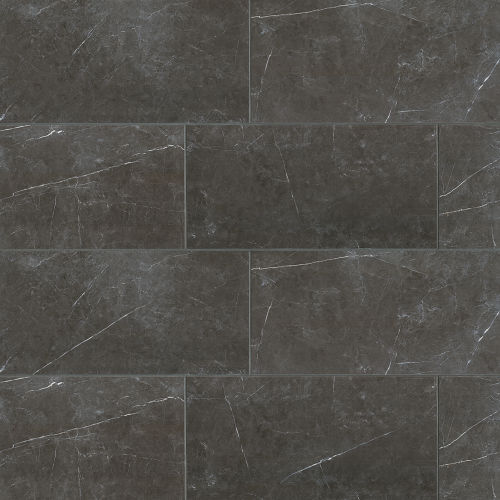 "Troy 24"" x 48"" Floor & Wall Tile in Nero"