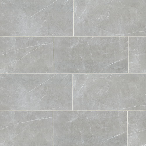 "Troy 24"" x 48"" Floor & Wall Tile in Silver"