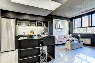 Stylish apartment close to the commercial  Saint-Catherine Street