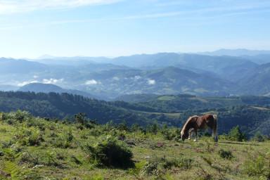 Pays Basque intérieur
