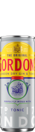 Gordon's & Tonic 12x25c