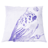 Spacecraft Rosella Cushion