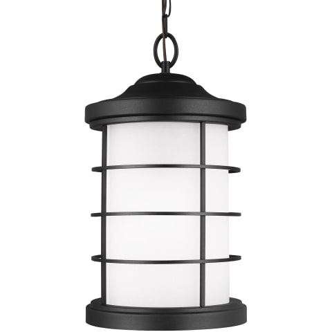 Sauganash One Light Outdoor Pendant Black