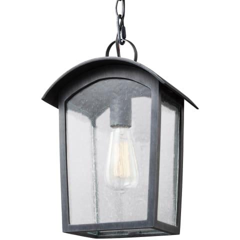 Hodges 1 - Light Outdoor Pendant Lantern Ash Black