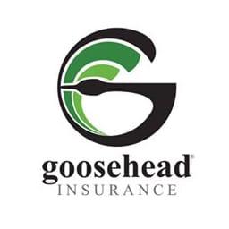 Goosehead insurance ipo date