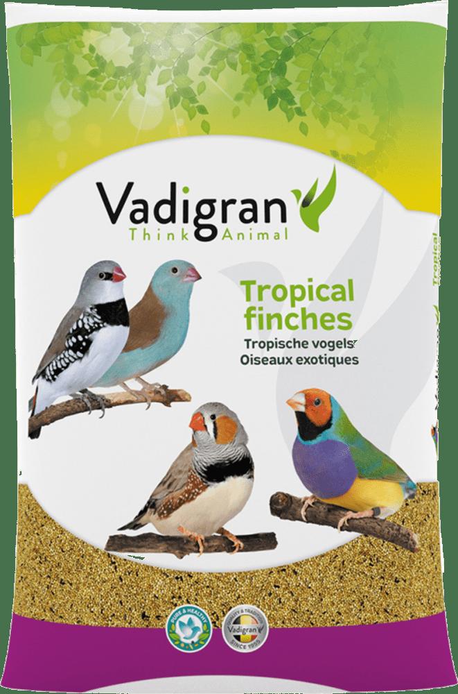 Vadigran Basic Tropical Finches