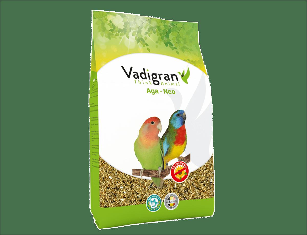 Vadigran Agapornis & Nephema