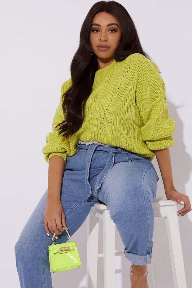 CURVE HARIET CREW NECK POINTELLE RIBBED JUMPER