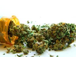 Dr  dieter jung cannabis verordung aktueller stand fotolia   atomazulawvikp