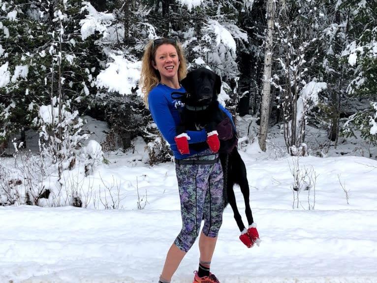 Photo of Mago, a Labrador Retriever, Great Pyrenees, Border Collie, Saint Bernard, Rottweiler, and Mixed mix in Browning, Montana, USA